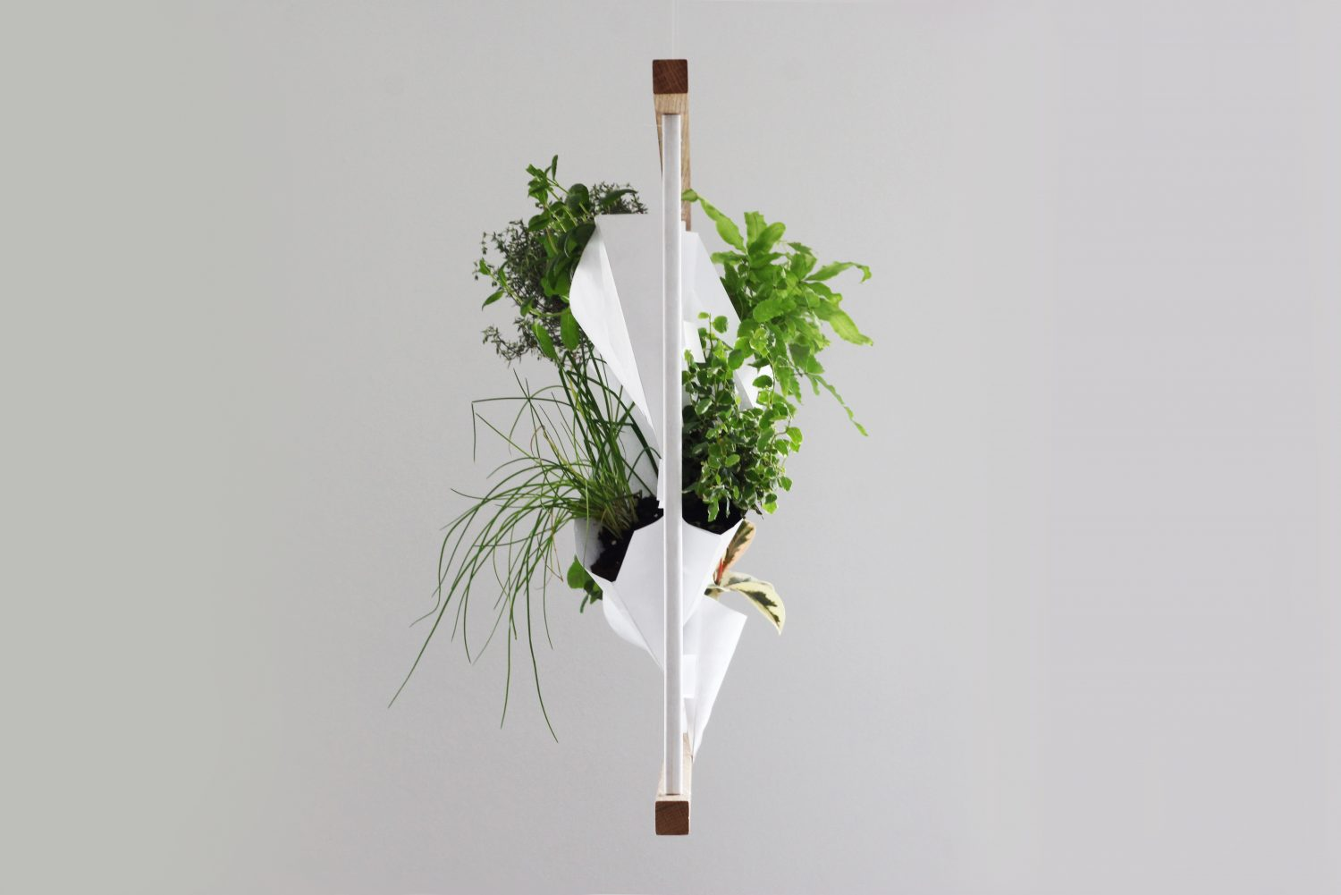 greenwall franck grossel tyvek design product